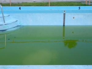 Por que pierde agua una piscina mis articulos for Piscina que pierde agua
